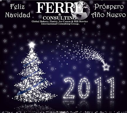 Merry Christmas and a Happy New Year 2011