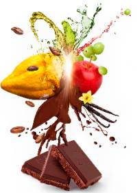 Barry-Callebaut-Sweet-by-fruit-Visual-Products