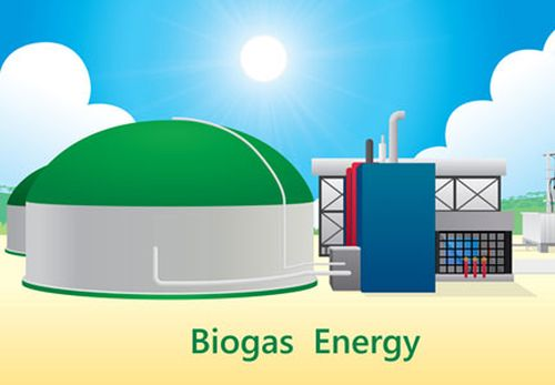 "Referred to as ""mechanical stomachs,"" biodigesters are fed organic material, which is broken down by microorganisms to produce biogas, a renewable energy."